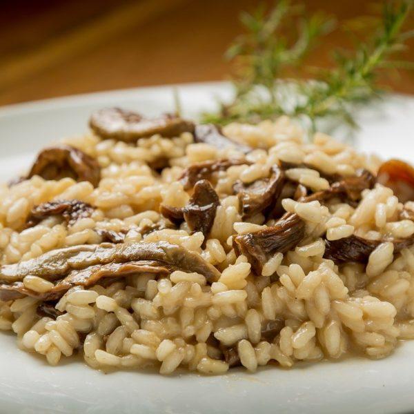 rice-4457143_1280